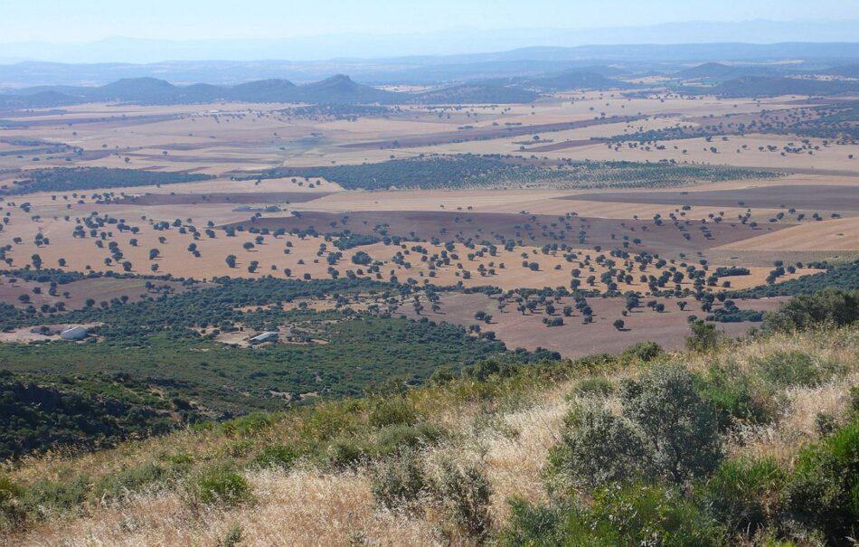 Organizaciones ecologistas se unen contra la minería de tierras raras en Castilla-La Mancha