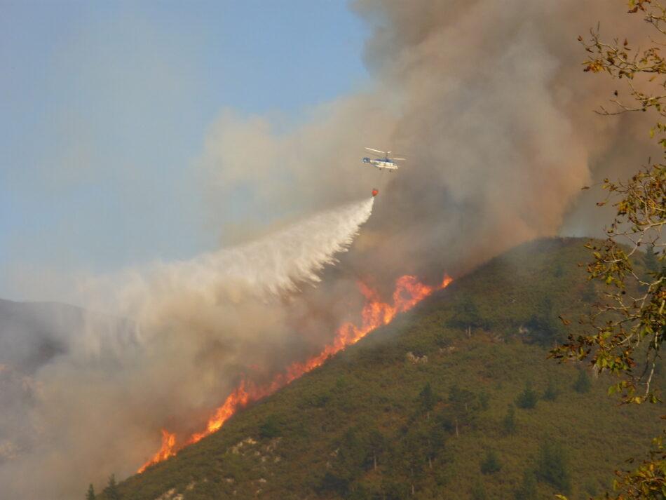 Ante los incendios forestales en Asturias los Grupos ecologistas reclaman a los grupos de la Junta General