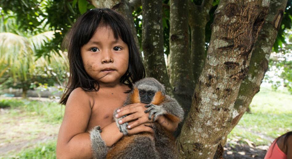 Greenpeace se vuelca en la Amazonia para luchar por la supervivencia de la tribu Mundurukú