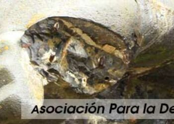 La Asociación Para la Defensa del Valle de los Caídos se querellará contra el diario.es por el artículo «Dinamitar el Valle de los Caídos»