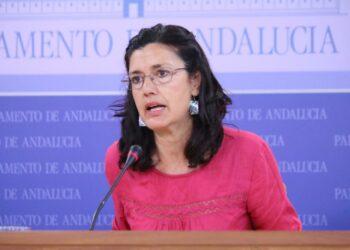 EQUO Andalucía insiste en la importancia de vertebrar la comunidad a través de ferrocarril tradicional