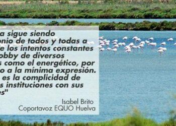 """EQUO exige el cierre """"inmediato"""" de los pozos y regadíos ilegales que ponen en peligro la supervivencia de Doñana"""