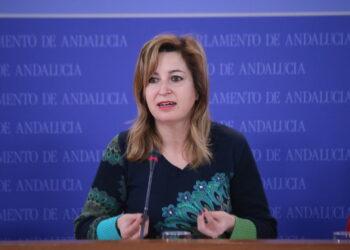 Podemos Andalucía cierra el periodo de sesiones con 2.000 iniciativas y nueve leyes presentadas