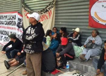 México: Se unirán 2 mil campesinos a protestas de disidencia magisterial en CDMX