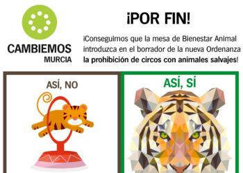 Cambiemos considera un «primer paso» la prohibición de circos con animales no domésticos en Murcia