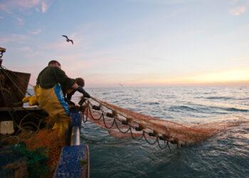 Acuerdo positivo en la UE sobre el arrastre de fondo en aguas profundas