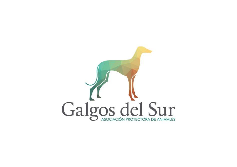 CNT inicia conflicto sindical con la Asociación Galgos del Sur por despido de trabajadores tras reclamar contra 'lamentables condiciones laborales'