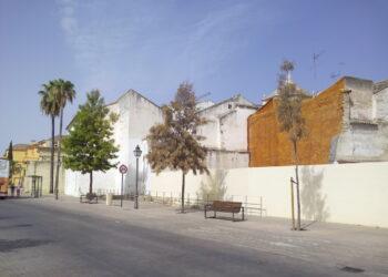 EQUO pide con urgencia al Ayuntamiento de Córdoba el riego del arbolado urbano