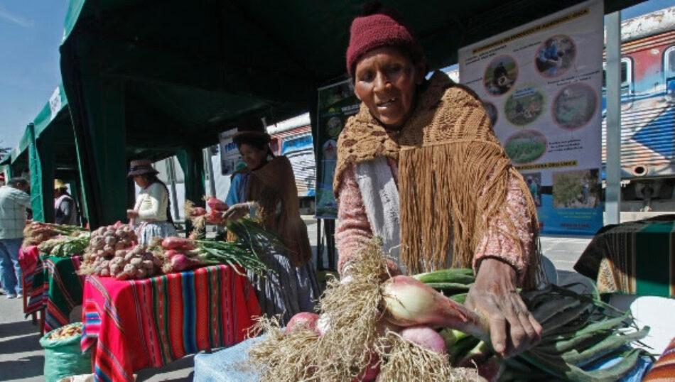 Más de 2 millones de bolivianos salieron de la extrema pobreza