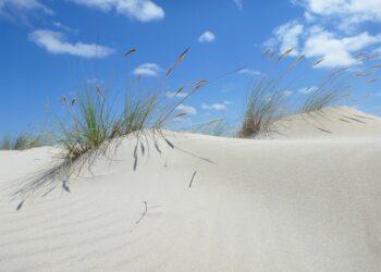 Salvemos Cabana recomienda proteger el complejo dunar de la Enseada da Ínsua durante la celebración del festival «V de Valarés»