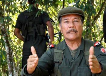 ELN desea éxitos a las FARC-EP, a pesar de no compartir acuerdo