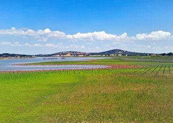 La Confederación Hidrográfica del Guadiana informa de manera desfavorable sobre la minería de tierras raras en Ciudad Real