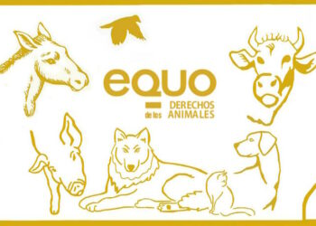 """EQUO exige que se elimine definitivamente el maltrato animal de """"la programación de ferias y fiestas"""""""