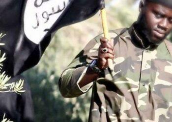 Estado Islámico: Un ex miembro de Daesh relata cómo se organiza la red de terroristas