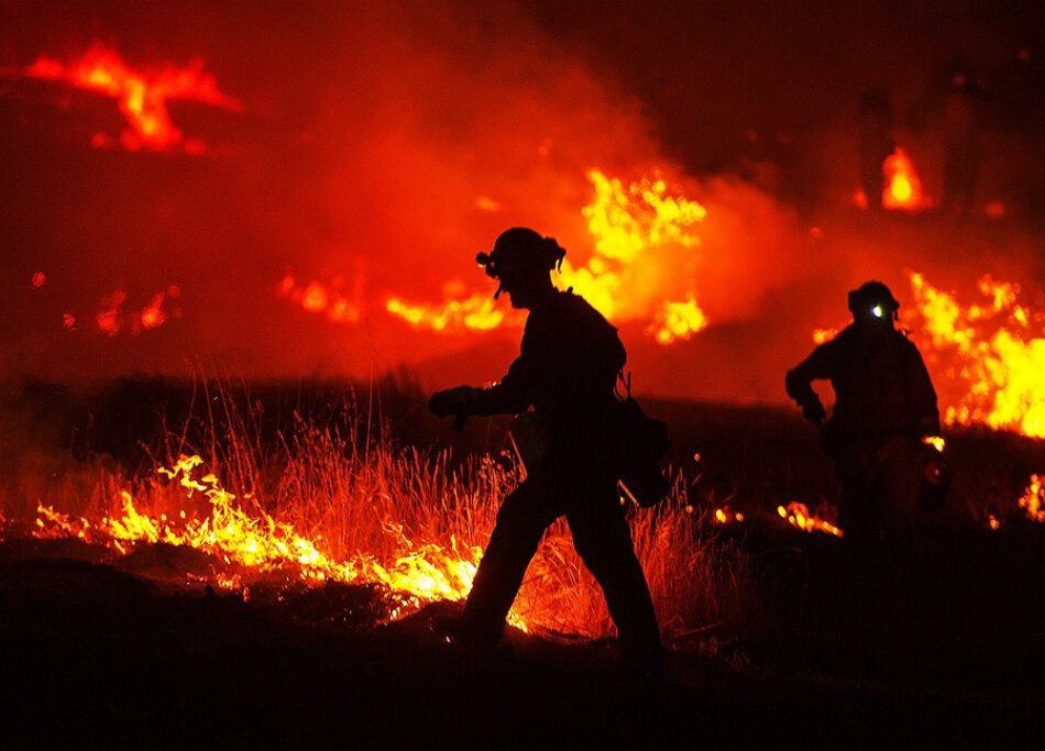 Amigos da Terra denuncia que a Xunta pide colaboración fronte aos lumes mentres aproba leis que os perpetúan