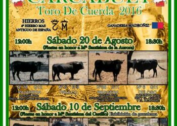 EQUO reclama a la Junta de Andalucía la suspensión del Toro de Cuerda de Carcabuey por maltrato animal