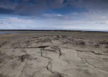 Reactivo: brote de ántrax en el Ártico