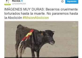 PACMA incendia las redes sociales con un vídeo brutal de una becerrada en Toledo
