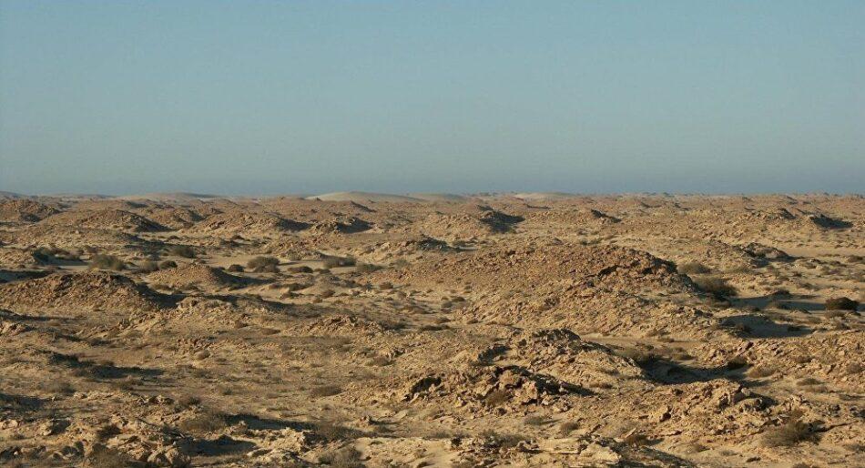 «El retorno a las acciones bélicas en el Sáhara Occidental está más cerca que nunca»