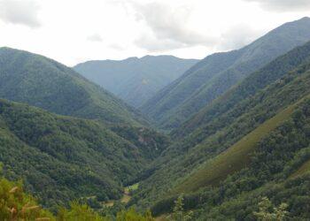 Coordinadora Ecoloxista d'Asturies se opone a una nueva carretera atravesando la reserva de Muniellos como pretenden el Ayuntamiento y el Principado