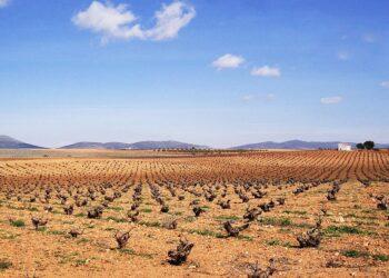 Ecologistas en Acción pide que se evalúe el potencial radioactivo de la minería de tierras raras en la provincia de Ciudad Real