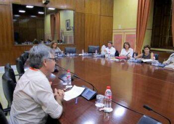 ENLACE reitera ante el Parlmento Andaluz que los servicios sociales no deben ser objeto de negocio