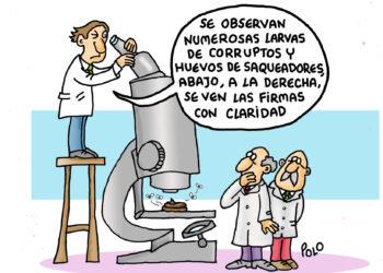 Larvas de corruptos