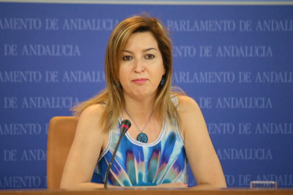 El Parlamento solicita al Ejecutivo andaluz el pago de las ayudas adeudadas a los autónomos
