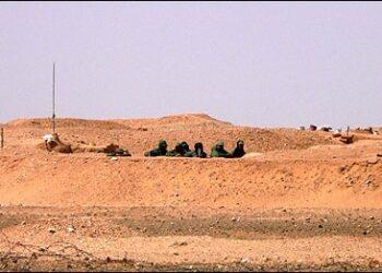 IU denuncia la violación del alto el fuego por parte de Marruecos en el Sáhara Occidental