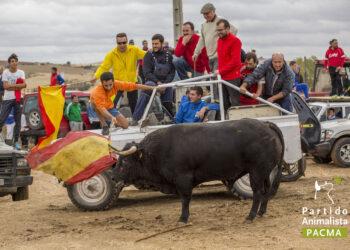 PACMA denuncia «un rally contra los animales» en La Alcarria
