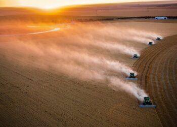 Amigos de la Tierra denuncia en un informe los impactos del TTIP en el sector agroalimentario