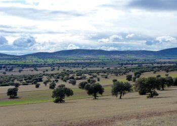 Un informe del MAGRAMA revela que la minería de tierras raras en Castilla-La Mancha no es ambientalmente viable