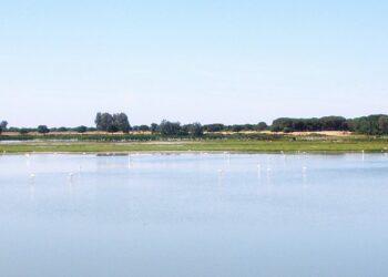 Nace Salvemos Doñana, iniciativa social para lograr la protección de esta Reserva de la Biosfera