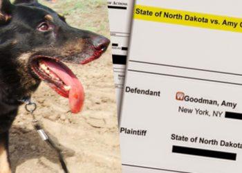 La periodista Amy Goodman se entregará a las autoridades de Dakota del Norte el 17 de octubre
