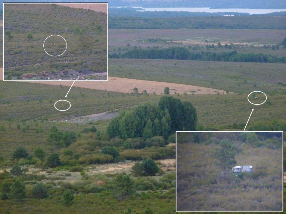 """Celadores de caza de la Reserva Regional de Caza (RRC) """"Sierra de la Culebra"""", ¿competentes cómo para confiarles los censos de lobo y respetar el pujante turismo de naturaleza?"""