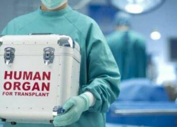 Desmantelada otra red de tráfico de órganos israelí