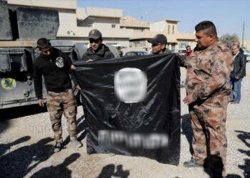 Fuerzas iraquíes liberan de Daesh dos distritos cerca de Mosul