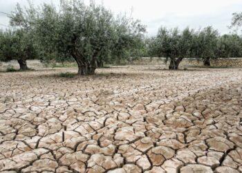 EQUO pide con urgencia una ley de cambio climático
