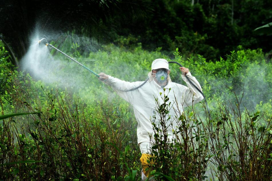 Un informe científico sobre el glifosato alerta sobre sus peligros para la salud y el medio ambiente