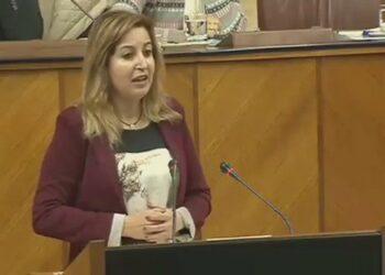 Podemos Andalucía considera tibia y conformista la posición de Montero en el CPFF