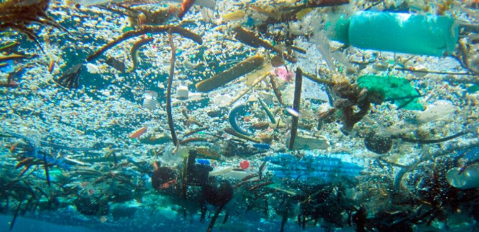 Las basuras marinas son una grave amenaza para los ecosistemas