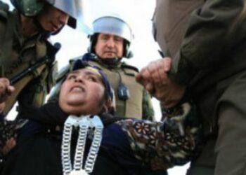 Nación Mapuche: Amnistía Internacional da cuenta del uso excesivo de la fuerza policial y de detenciones arbitrarias a mapuches