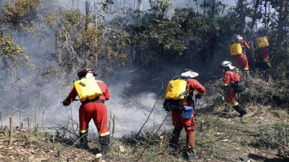 Unos 18 mil efectivos combaten 131 incendios forestales en Chile