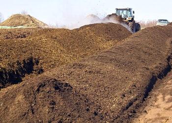 ¿Cómo reducir a la mitad nuestros residuos?