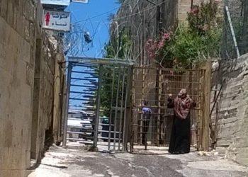Alianza por la Solidaridad alerta sobre la crisis humanitaria que desencadenan los asentamientos ilegales israelíes en Palestina