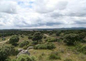 Ecologistas y asociaciones vecinales denuncian prácticas ilegales de caza en Campamento