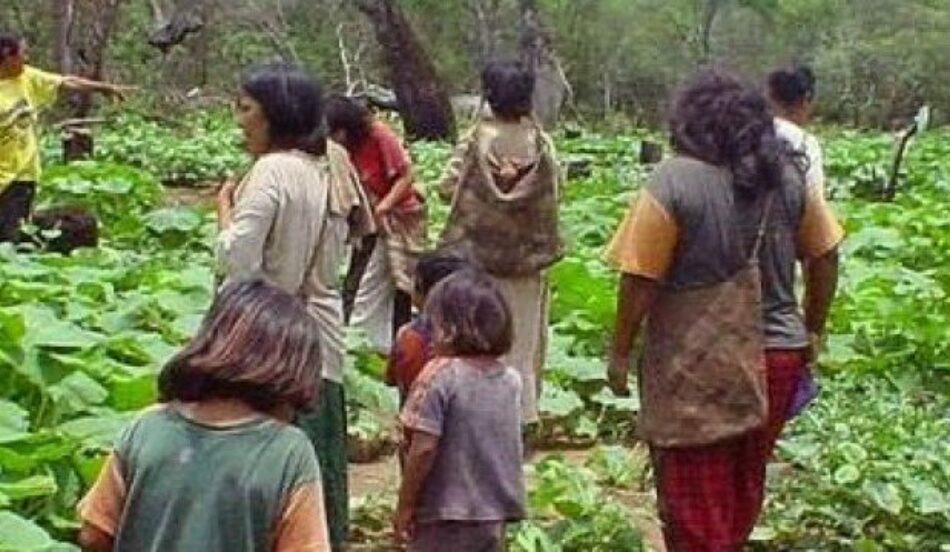 Comunidad Xákmok Kásek recupera 70% del territorio reclamado en Paraguay