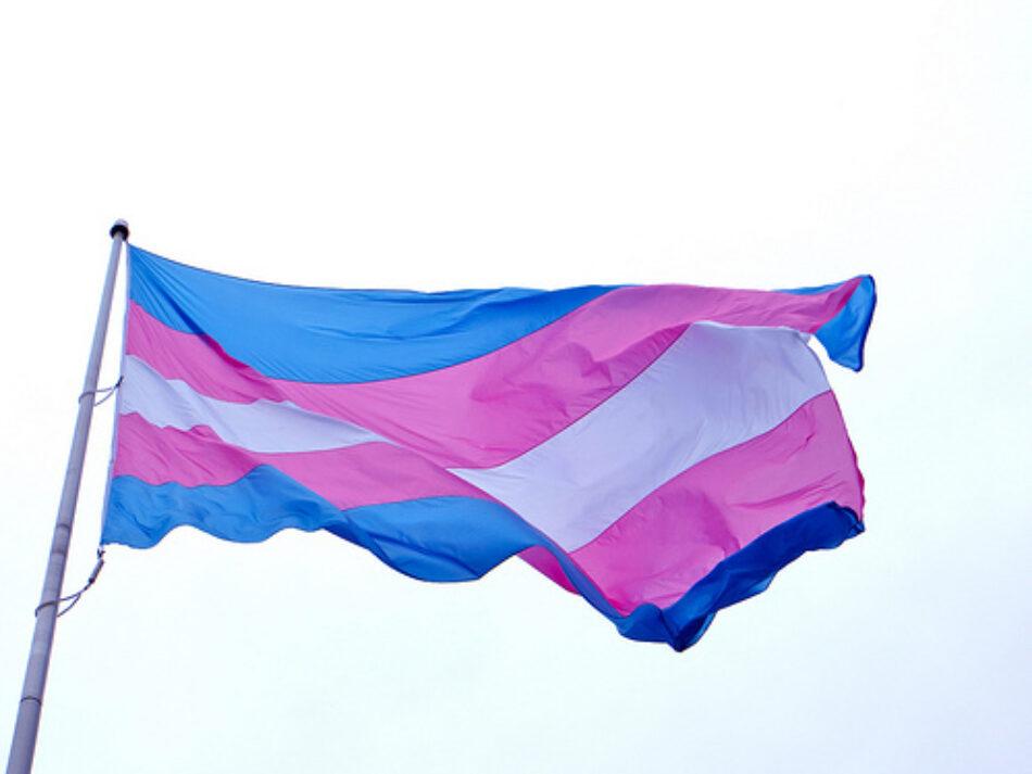 Transexuales de Andalucía insta a los gobiernos municipales y autonómico a engalanar la bandera trans y a pronunciarse contra la campaña de odio y transfobia de hazte oir