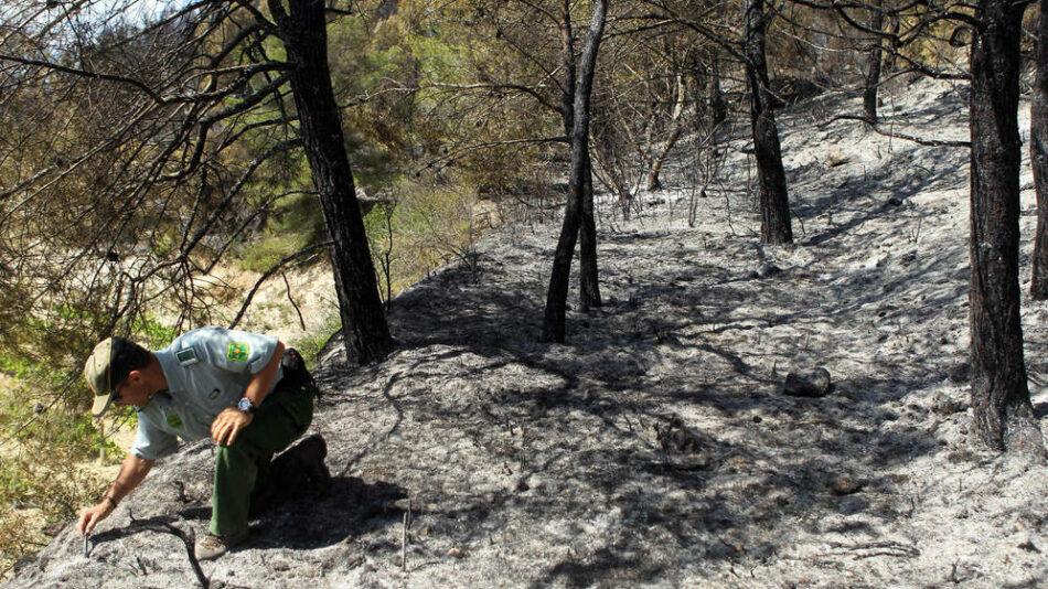En Comú Podem registra una moción para mejorar las condiciones laborales y de seguridad de los agentes forestales