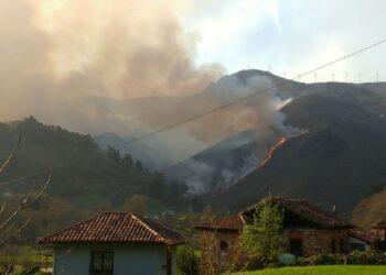 Asturias pasará  a ser la única Comunidad de toda la UE en la que no se acotarán al pastoreo las zonas arrasadas por incendios forestales